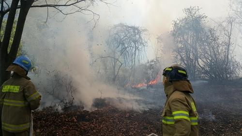 건조한 날씨·강풍에 강원 곳곳 산불…고성 DMZ 잔불 여전(종합2보)
