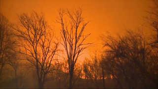 미국 테네시주 대형 산불, 10대의 불장난 때문?