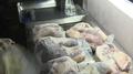 Desciende la tasa de autosuficiencia de Seúl en grano, carne vacuna y marisco en..