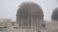 El operador nuclear cierra un reactor para resolver el problema del refrigerante