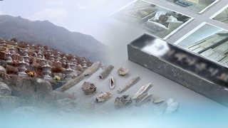 유골 3천455구 불법 소각…안치시설 대표 구속