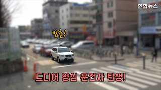 [현장영상] 초교 앞 횡단보도 166명 '쌩∼' 이윽고 양심운전자 등장