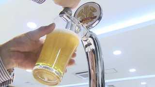 수입맥주 공세에 국산 맥주 비상…도수ㆍ가격으로 승부