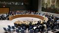 Tillerson insta a los miembros de la ONU a suspender o reducir sus relaciones co..