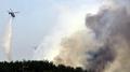 Incendies dans le Gangwon : 130 hectares de forêt ravagés