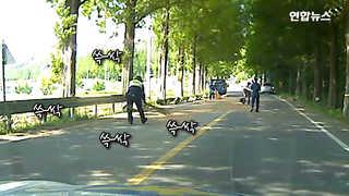 [현장영상] 도로에서 염소사료 '대청소'