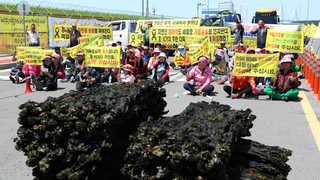 세월호 인양때 기름피해 어민들 목포신항 이틀째 시위