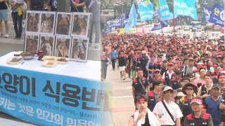 """""""개식용 반대ㆍ집배원 충원""""…서울 도심 곳곳서 집회"""