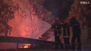 [현장영상] 프랑스 휴양지 산불 확산 '비상'…1만2천여명 대피