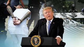 트럼프정부 '갱단 MS-13과의 전쟁' 선포