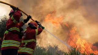 대형산불 피해 신음하는 유럽…포르투갈도 '활활' 外