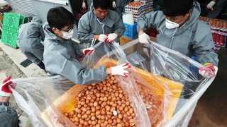 살충제 계란 농장 6곳으로 늘어…유통과정서도 발견