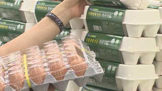 살충제 계란 여파…계란 판매 40% 감소