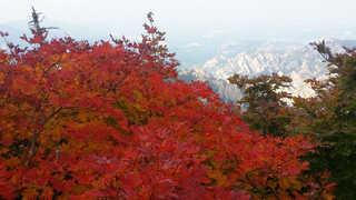 [뉴스초점] 때 아닌 가을 황사 주의…설악산 단풍 시작