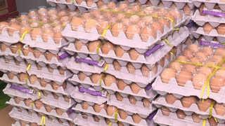 떨이 끝났나…대형마트 3사, 계란 한판 최고 5천880원으로 올려