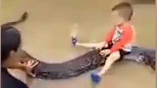 [핫뉴스] 6m 비단뱀이 애완동물?…베트남 가정에 벌금 外