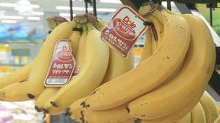 1인 가구가 바꾼 식품 판도…새우ㆍ바나나 인기 상승