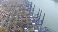 Corea del Sur alcanzará la mayor participación en las exportaciones mundiales