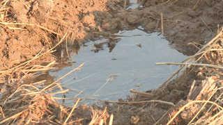 진앙지 흙탕물 솟구쳐…액상화 조사 첫 착수