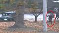UNC : plusieurs soldats nord-coréens ont violé l'armistice en poursuivant le tra..