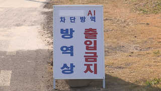 AI 확산 우려…해남ㆍ완도ㆍ영암군 해맞이 행사 취소