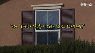 [현장영상] 미 가정집서 사슬묶인 남매 13명 발견…부모 고문혐의로 체포