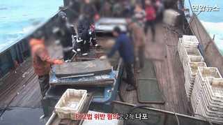 [현장영상] 우리측 EEZ서 잡은 어획량 축소기재 중국어선 2척 나포