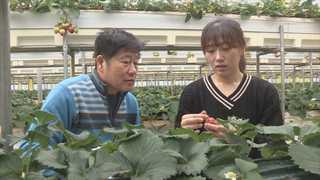 """""""대 잇는 젊은 농부""""…미래 농업에 희망을 쏘다"""