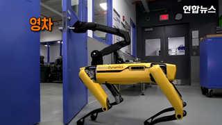 [현장영상] '내가 도와줄게'…손잡이 돌려 문 열어주는 로봇
