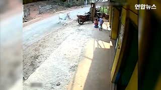 [현장영상] '동생은 내가 지킨다'…돌진하는 소에 맞선 8살 누나