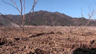 3월 매서운 꽃샘추위…봄에도 가뭄 심각