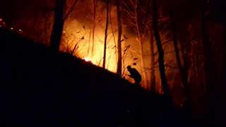 봄철 대형 산불 비상…입산자 실화 대부분