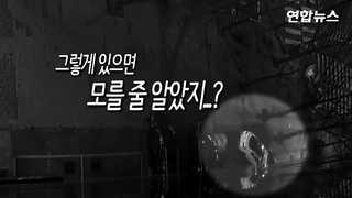 """[현장영상] """"저 차 수배 차량인데"""" 한밤중 쫓고 쫓기는 도심 추격전"""
