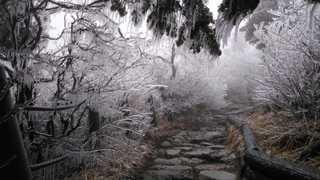 설악산 고지대 '얼음꽃' 장관…수요일 화창한 봄
