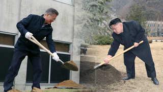 남북 정상, 군사분계선에 '평화의 나무' 심는다