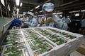 중국 지난달 산업생산 6.0% 증가…전망치 하회(속보)