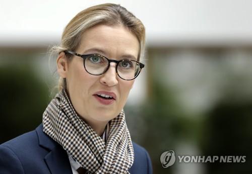 '난민 돌아가라' 獨극우 총리후보, 시리아 난민고용 드러나