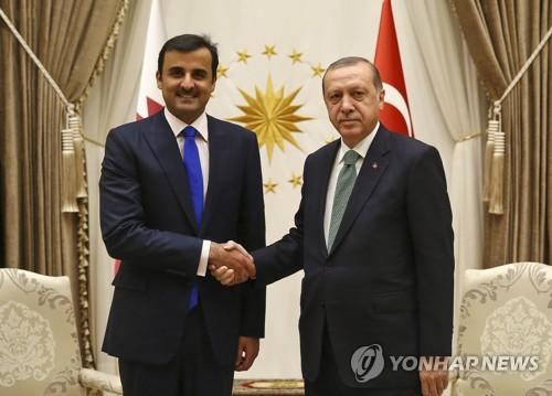 카타르 군주, '우군' 에르도안과 회담…단교사태 후 첫 외국방문