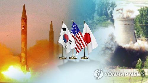 """""""대북 외교…미국식 아닌 아시아식 외교 펼 때"""""""