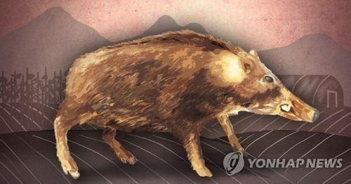 [울산소식] 울주군, 유해 야생동물 퇴치용품 보조금 지원