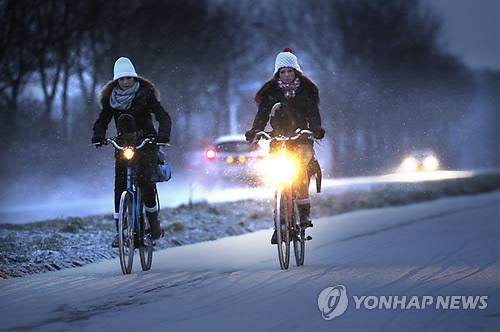 '자전거 나라' 화란, 자전거 탈 때 스마트폰 사용금지 추진 논란