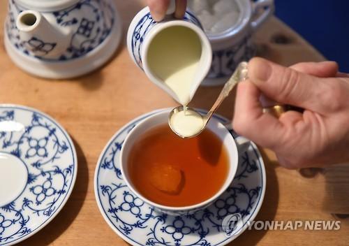 """""""茶, 인지기능 저하 억제"""""""