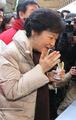 Park Geun-hye goûte une crêpe coréenne