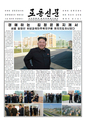 Five photos of Kim on front page