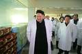 Kim Jong-un at foodstuff factory