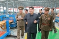 N.K.'s Kim inspects building materials complex