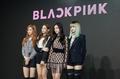 YG's new girl group Black Pink