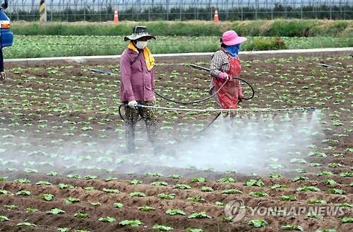 농관원 제주지원, 미등록 농약 사용 농산물 조사