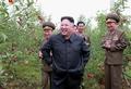 N.K. leader visits orchard