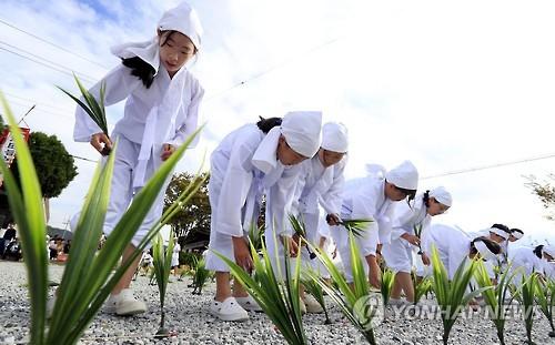 [주말 N 여행] 호남권: '유두절'을 아세요…광주 북구 농요 한마당